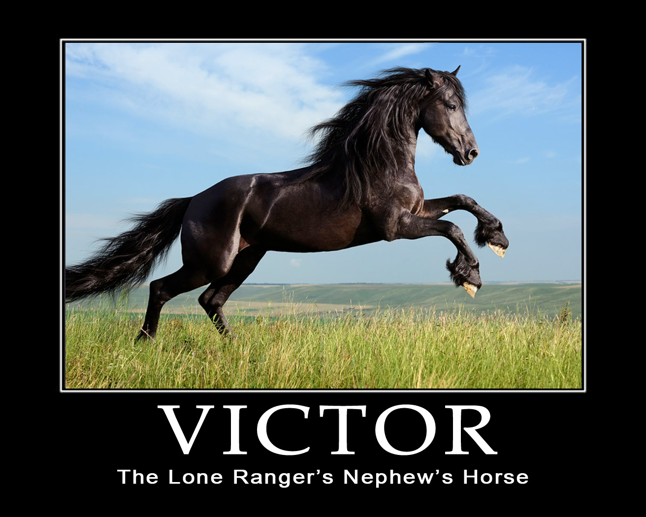 The Lone Ranger's Nephew's Horse (Fake Motivational Poster)